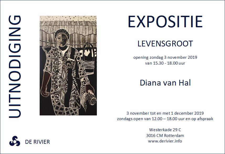 Solo Expositie bij Galerie De Rivier | Opening 3 november 15.30 uur